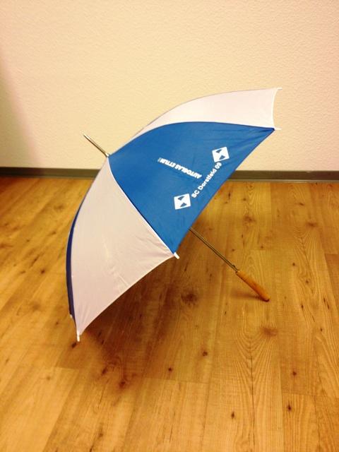 DSC09 Regenschirm und leichterer Zugriff für Websiteautoren